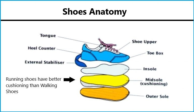 running-shoes-vs-walking-shoes-Shoe-Anatomy